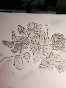 Roses - charcoal and chalk
