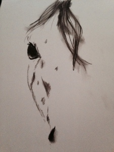 The horse - charcoal